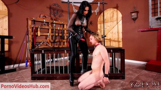 Watch Online Porn – ClubDom – Temptress Raven Eve – Part 6 (MP4, FullHD, 1920×1080)