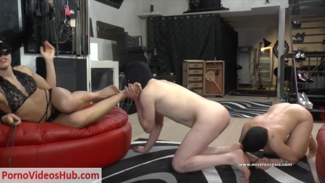 Watch Online Porn – MISTRESS GAIA – TWO BEAST'S TO TRAIN (MP4, HD, 1280×720)