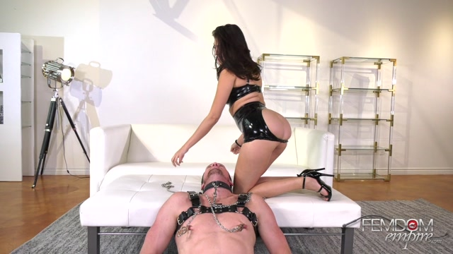 Watch Online Porn – FemdomEmpire presents Stephanie West – Full Course Meal – 20.05.2019 (MP4, FullHD, 1920×1080)