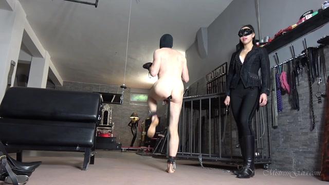 Watch Online Porn – MISTRESS GAIA – BALL ABUSE PONY TRAINING (MP4, FullHD, 1920×1080)