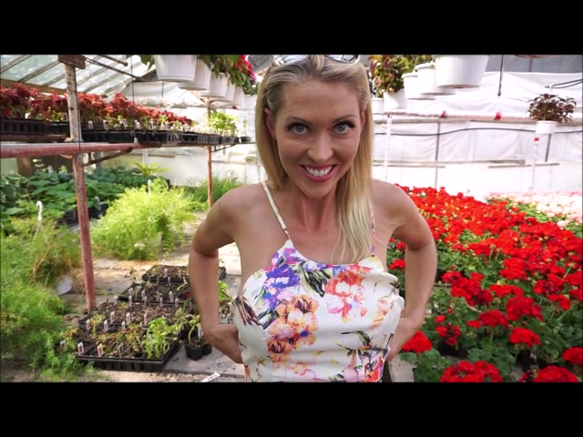 Watch Online Porn – ManyVids presents TianaLive in hollyhotwife – Flashing With Flowers (MP4, SD, 854×640)