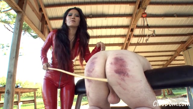 Watch Online Porn – ClubDom – Mistress Caning Helpless Slave (MP4, HD, 1280×720)
