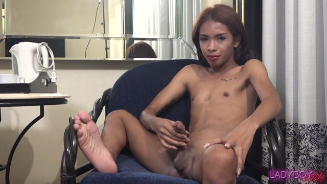 Watch Online Porn – Ladyboy.xxx presents Sexy Fun With Kourtney! – 09.07.2018 (MP4, HD, 1280×720)