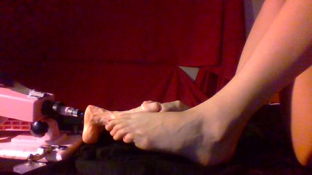 Watch Online Porn – ManyVids presents Annabelle Bestia – foot job (MP4, HD, 1280×720)