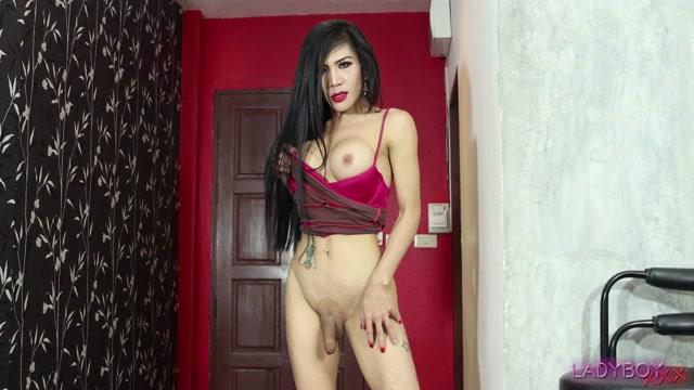 Watch Online Porn – Ladyboy.xxx presents Sexy Naughty Mo! – 10.09.2019 (MP4, HD, 1280×720)