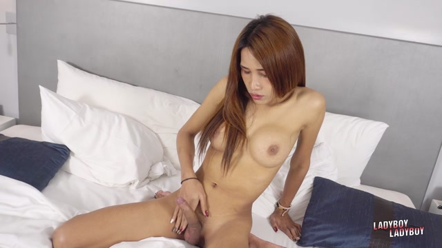 Ladyboy-Ladyboy_presents_Stunning_Cartoon____15.10.2019.mp4.00015.jpg
