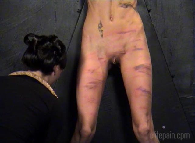 ElitePain_presents_The_Auction__Remastered_.mp4.00012.jpg