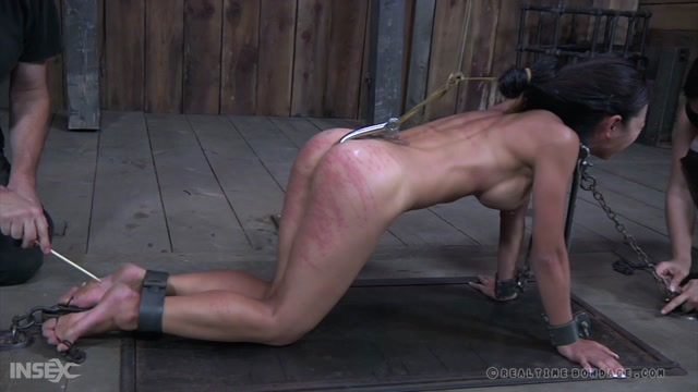 RealTimeBondage_presents_Tia_Ling__Sister_Dee_-_Turd_Says_Part_Two___05.09.2020.mp4.00001.jpg