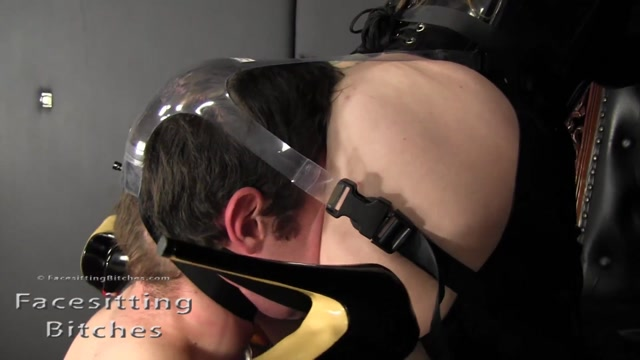 Facesitting_Bitches_-_Fb1412_-_Harnessed_Ass_Slave.mp4.00007.jpg