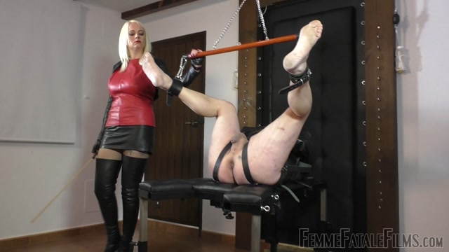 Watch Free Porno Online – Femme Fatale Films – Divine Mistress Heather – Ballstinado (MP4, FullHD, 1920×1080)