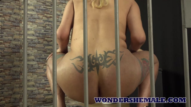HoneyTrans___Patricia_Arruda_Transsexual_prison_guard_Patricia_Arruda_teases_bubble_butt_and_jerks_off_3_4K_by_am.mp4.00008.jpg