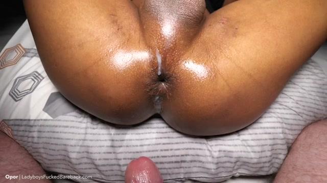 Ladyboysfuckedbareback_presents_Opor_2_Plugs__ATM__Top_Fetish_Creampie___15.12.2020.mp4.00015.jpg