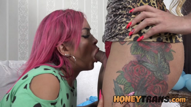 HoneyTrans___Sophia_Mello_big_tits_latina_opens_up_ass_for_transsexual_cock_3_4K_by_am.mp4.00000.jpg