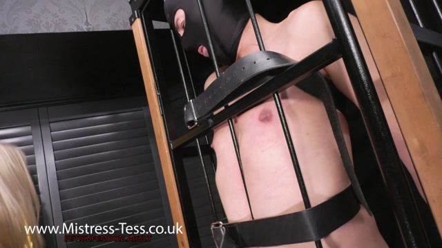 Mistress Tess - Bringing all the pain to his nipples - Nipple Torture 00015