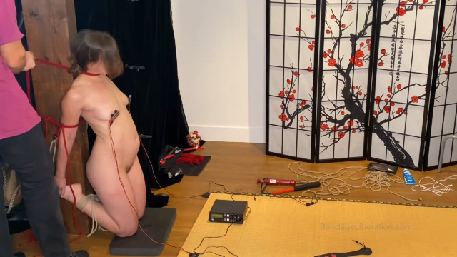 The Silent Treatment Part One - Elise Graves and Utmost Restraint 00009