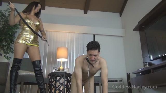 Amazon Goddess Harley - Whipping The Cuck-Fuck 00002